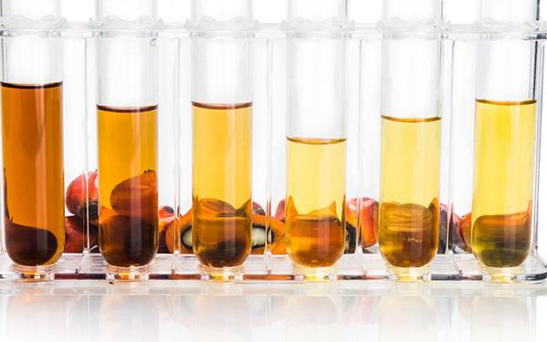 生物柴油过滤方案