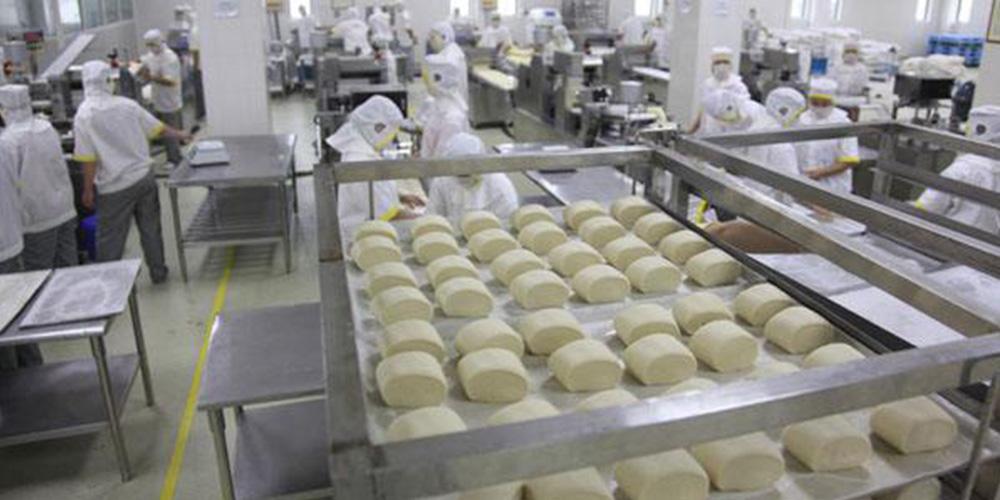 洛阳**食品公司中央厨房面粉供料系统